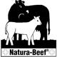 naturabeef80